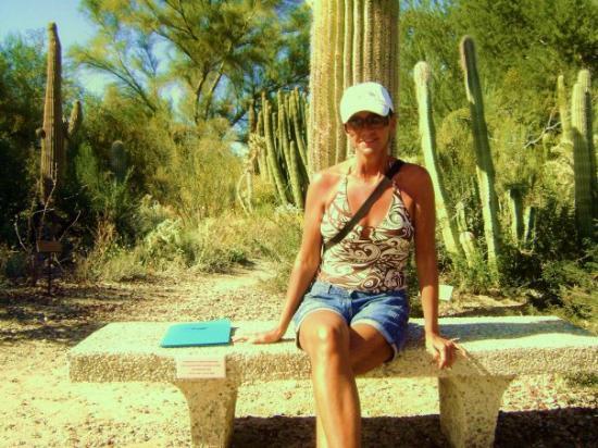 Living Desert Zoo & Gardens: DESSERT PALM CALI 2008