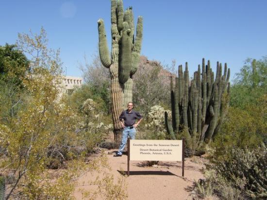 สกอตส์เดล, อาริโซน่า: Greetings from Arizona.