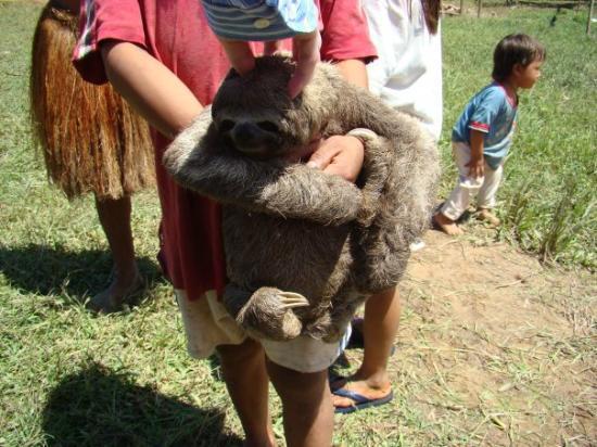 Leticia, โคลอมเบีย: Comunidad Yagua - mar 22 niño con oso perezoso