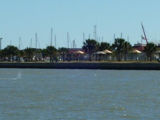 พอร์ตแอรานซัส, เท็กซัส: Port Aransas, TX,,,,,2008  This is the ferry going from the mainland Aransas,to the Island,  Y