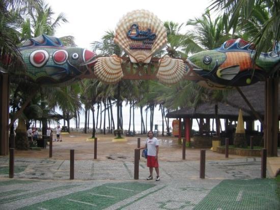 Beach Park Resmi
