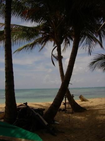 Little Corn Island, นิการากัว: Farm Peace and Love