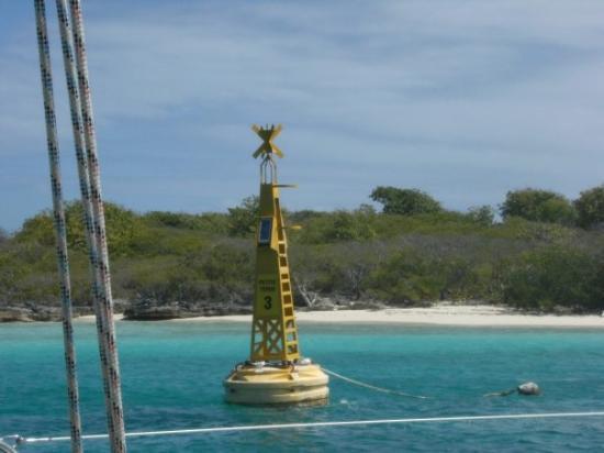 Sainte-Anne, กวาเดอลูป: superbe île petite terre visité en Catamaran nous avons passé la journée sur cette île inhabité