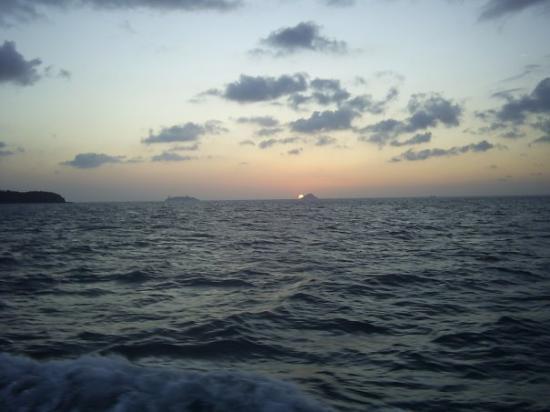 Bosphorus Cruise: Le Bosphore...