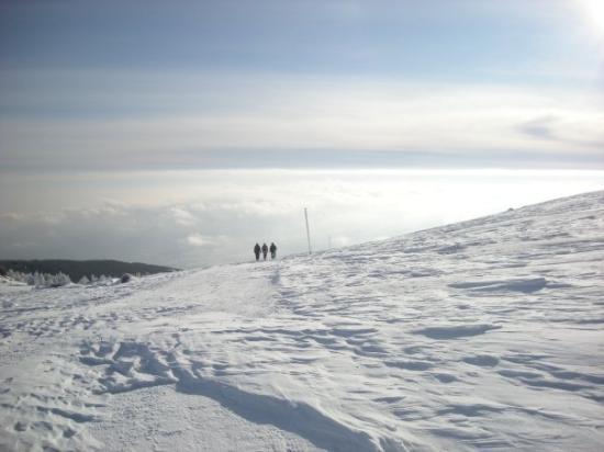Vitosha Mountain Photo