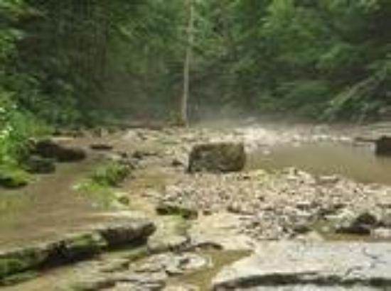 สเปนเซอร์, อินเดียน่า: McCormmick's Creek. Spencer, IN