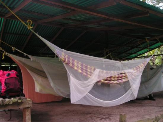 วาเลนเซีย, เวเนซุเอลา: Albergo