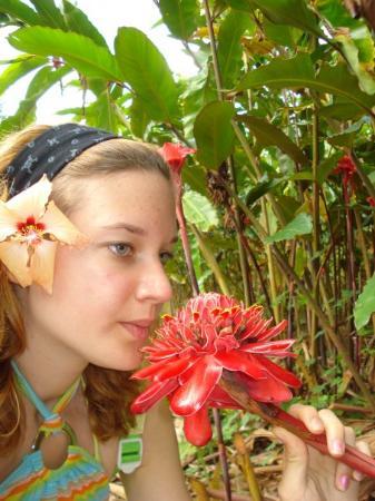 ปาเปเอเต, เฟรนช์โปลินีเซีย: Jardin Botanique