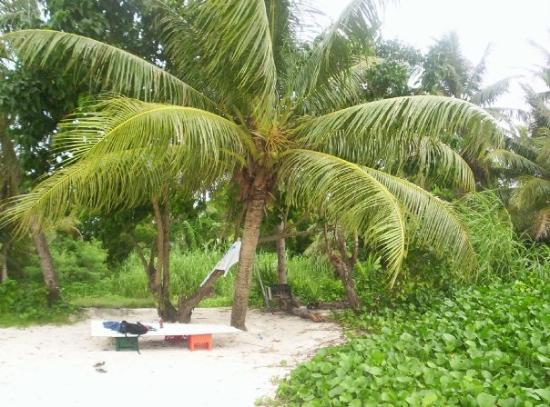 ทูมอน, หมู่เกาะมาเรียนา: campement