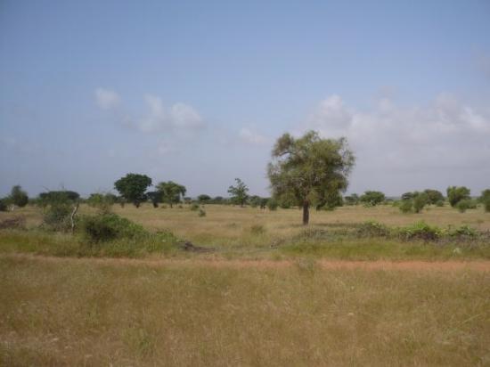 région de Louga
