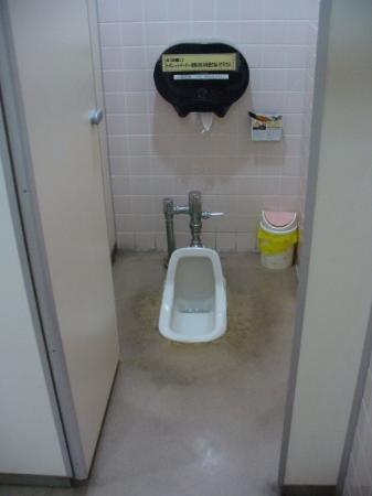 โอะกินะวะ, ญี่ปุ่น: Yes their toilets are in the ground.  Best to squat facing the handle not away from it.