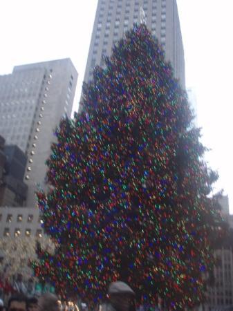 เซ็นทรัลปาร์ค: Nueva York, Nueva York, Estados Unidos