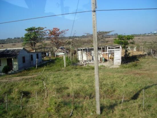 Cayo Santa Maria (เกาะคาโย ซานตา มารีอา), คิวบา: Un petit coin de campagne cubaine.
