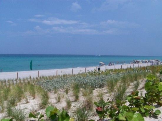 เวสต์ปาล์มบีช, ฟลอริด้า: hollywood beach