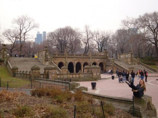 เซ็นทรัลปาร์ค: ...in Central Park, NYC