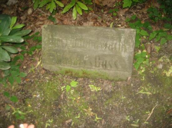 ไบรอยท์, เยอรมนี: the tomb of Wagners dog ;-))