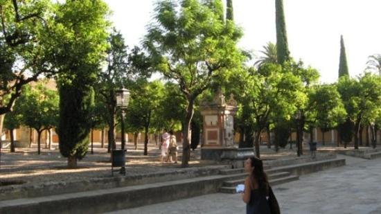 มหาวิหารแห่งคอร์โดบา: Giardino degli Aranci, all'interno della Chiesa-Moschea di Cordoba