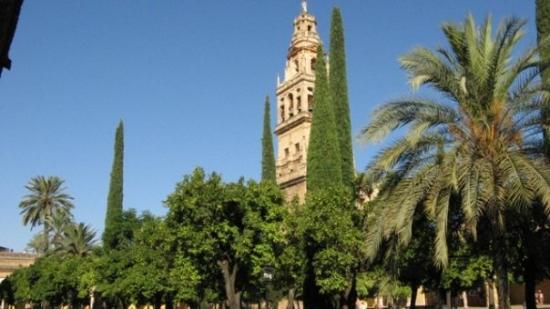 Alcazar de los Reyes Cristianos: Torre dell'Alcazar di Cordoba