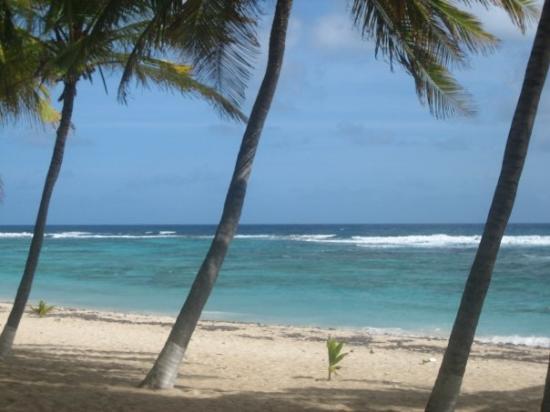ปวงต์-อา-ปิตร์, กวาเดอลูป: Guadeloupe