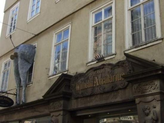 Marburg, เยอรมนี: An assydonkey