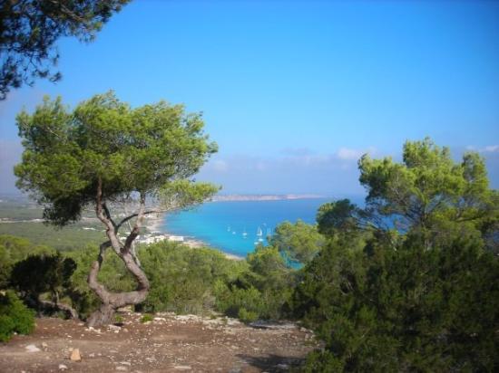 Santa Eulalia del Río, สเปน: Dsd lo mas alto<de Formentera