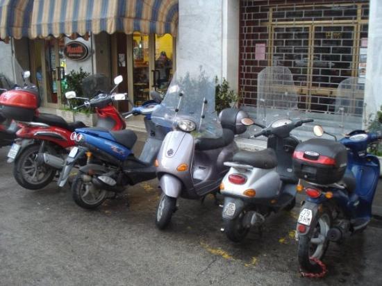 ปิซา, อิตาลี: the italian public transport