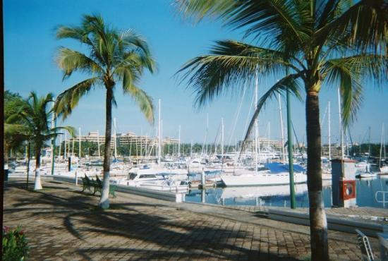Nuevo Vallarta (ชุมชนรีสอร์ทนวยโบ บัลลาร์ตา), เม็กซิโก: The marina across from my favorite cafe.