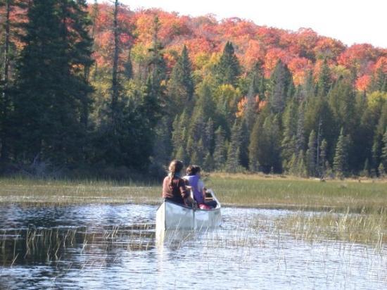 แอลกอนควินพาร์ค, แคนาดา: Kanutour im Algonquin Provincial Park in Ontario/Kanada
