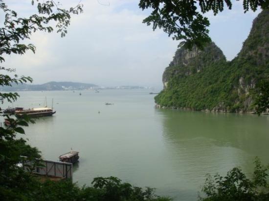 ฮาลองเบย์, เวียดนาม: Ha Long Bay