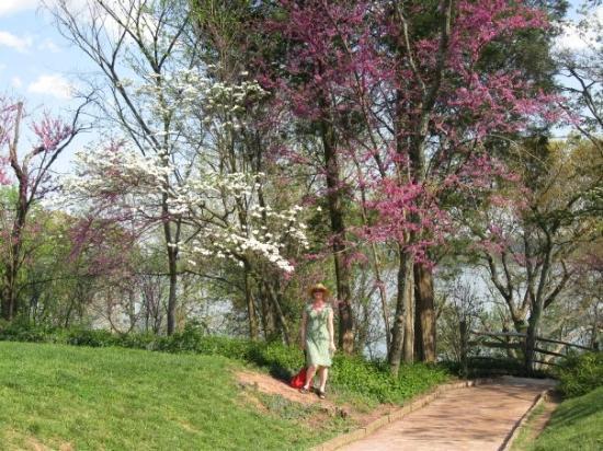 Mount Vernon, เวอร์จิเนีย: Lisa at Mt. Vernon.