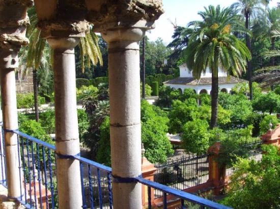 เซบียา, สเปน: Alcazar Garden