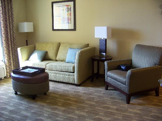 Homewood Suites by Hilton Lake Buena Vista-Orlando: Living room