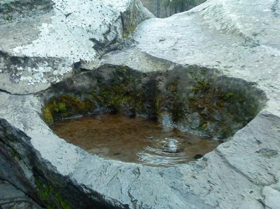 Borjomi-Kharagauli National Park, จอร์เจีย: Borjomi, tastan kaynayan su