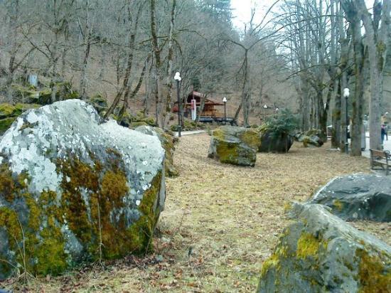 Borjomi-Kharagauli National Park, จอร์เจีย: Borjomi
