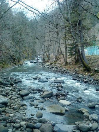 Borjomi-Kharagauli National Park, จอร์เจีย: Borjomi, mktvari (aras) nehri