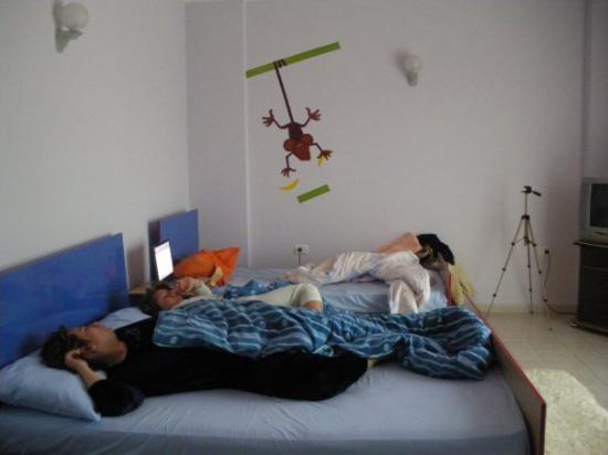 ติรานา, แอลเบเนีย: Моите кокони още спят в квартирата ни зад Операта.