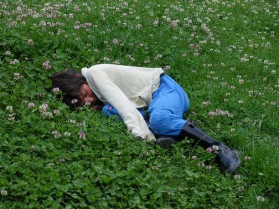 ติรานา, แอลเบเนีย: Някакво просяче спи в градинка в центъра на града.