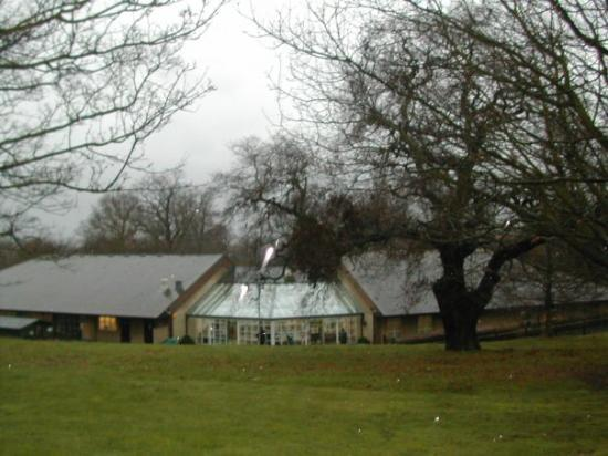 Colchester ภาพถ่าย