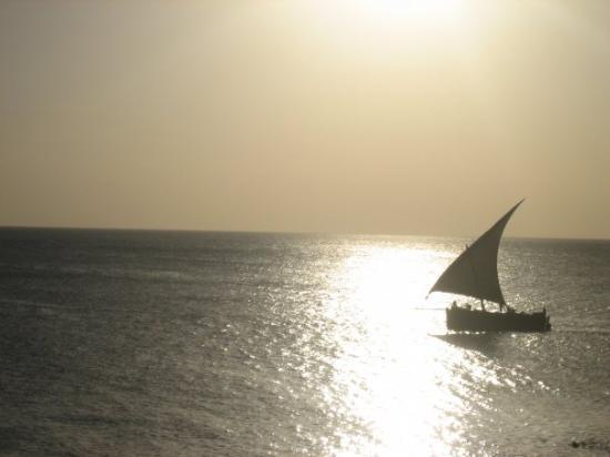 Serengeti National Park, แทนซาเนีย: Zanzibar. Beautiful!