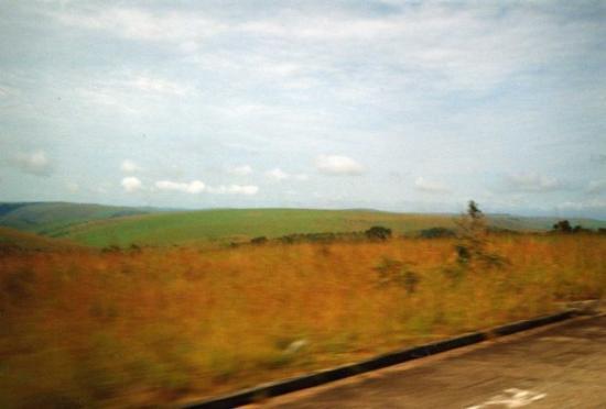 Franceville, กาบอง: savanne