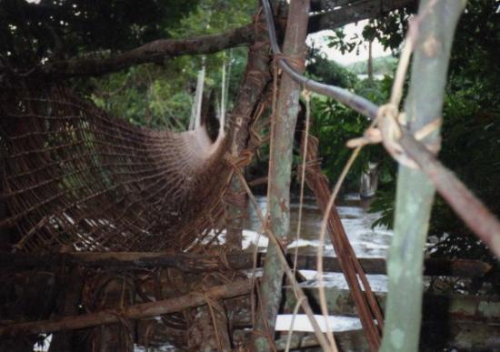 Franceville, กาบอง: le pont de lianne