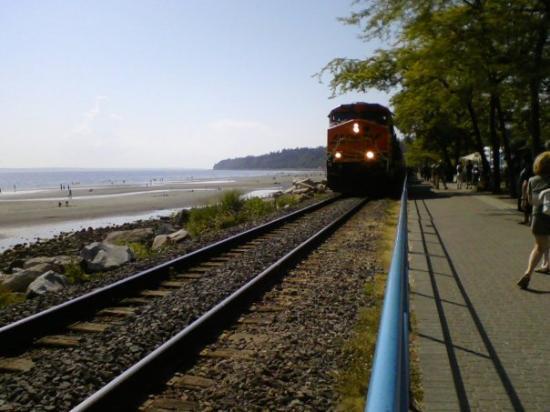 ไวต์ร็อก, แคนาดา: The train coming by along the beach