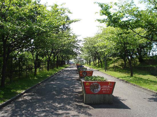 Omoriyama Zoo: 緑がいっぱい♪