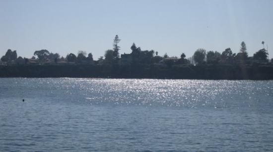 Santa Cruz Wharf ภาพถ่าย