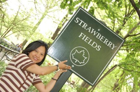 Strawberry Fields, John Lennon Memorial: forever...