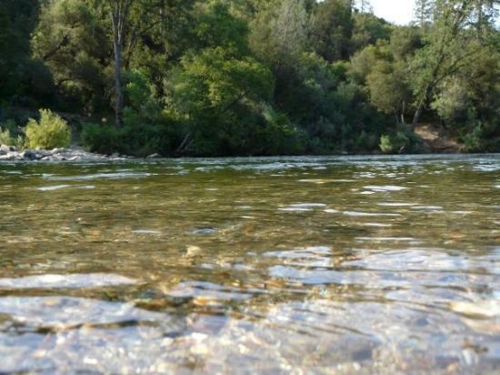 แซคราเมนโต, แคลิฟอร์เนีย: so peaceful at night sleeping right next to the river aaaa.......