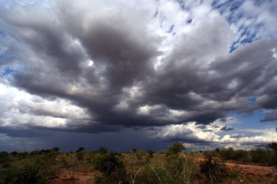 Tsavo National Park West ภาพถ่าย