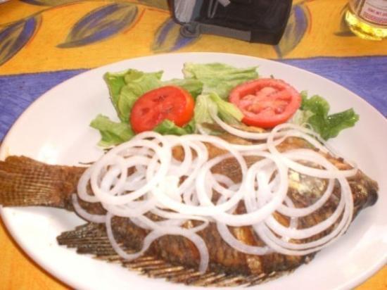 เวรากรูซ, เม็กซิโก: Poisson pêché dans le lac de Catemaco et mangé par MOAAA!!!