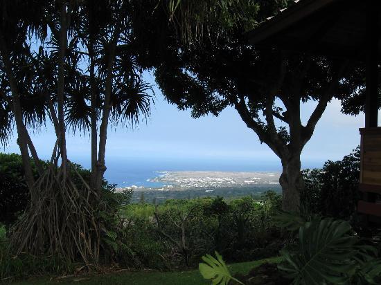 Holualoa Inn: View from a massage....sigh....