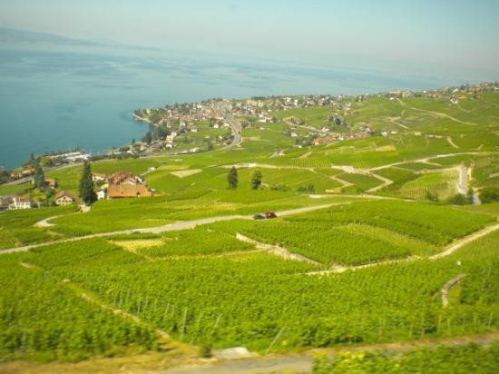 """เจนีวา, สวิตเซอร์แลนด์: ... dicen que Suiza es como la """"Bolivia Europea""""... pero igual tiene lagos mas grandes que boli"""